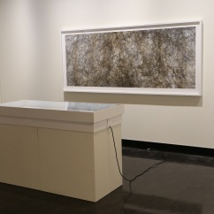 Heather Hesterman, FLOW, Counihan Gallery